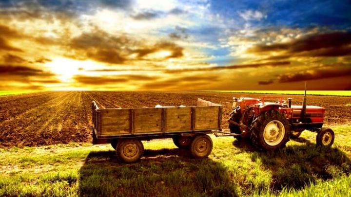 Türkiye Tarımsal Faaliyetler