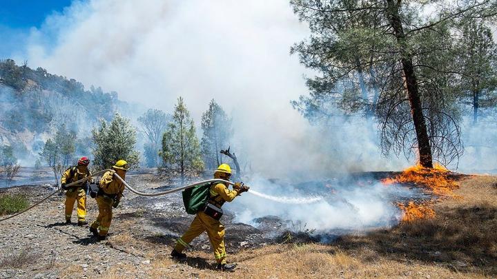 Orman Yangınları ile Mücadele Yöntemleri