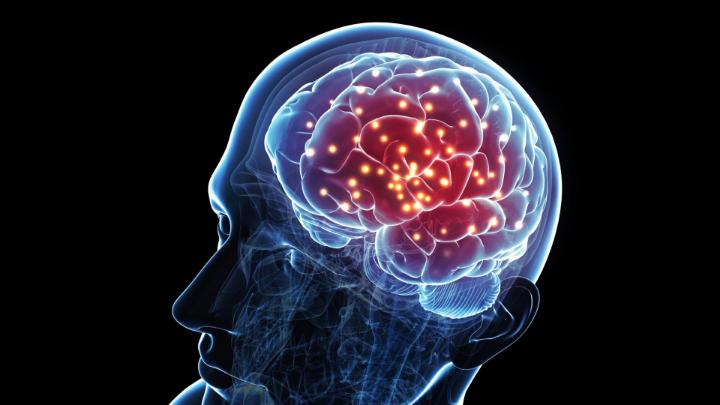 Beynimizin Yüzde Kaçını Kullanıyoruz